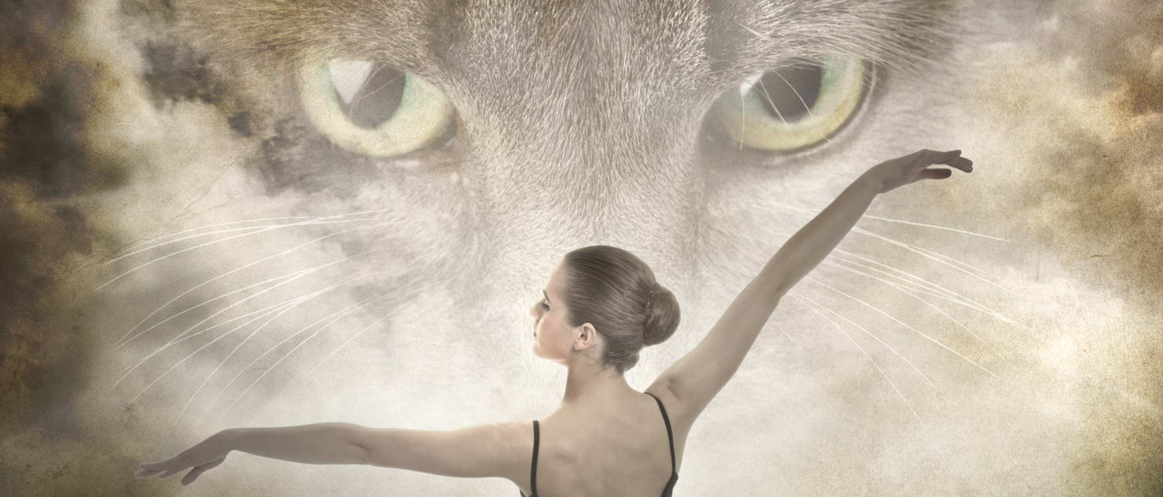 Portion of our Flyer for our 2014 production showing ballerina and Mowzer Cat. © Duchy Ballet